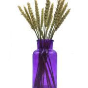 ваза булылочка фиолетовая с колосками